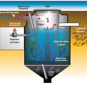 biodigestor-3000-litros