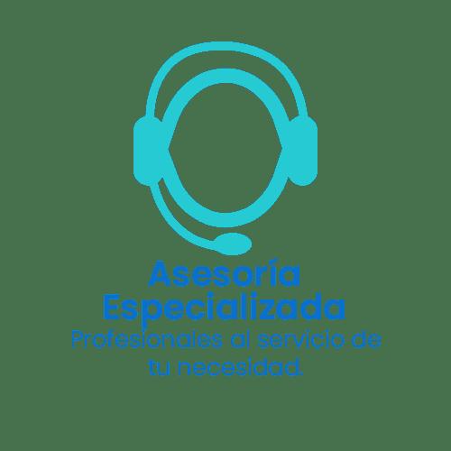 asesoria-especializada